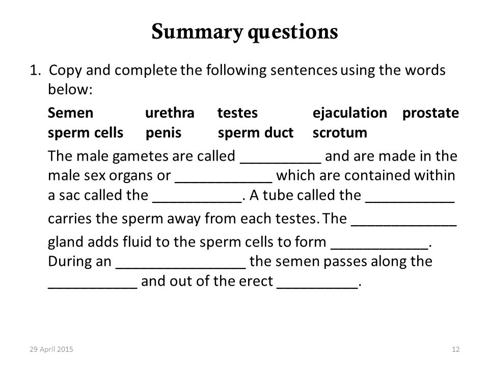 Summary questions 1. Copy and complete the following sentences using the words below:
