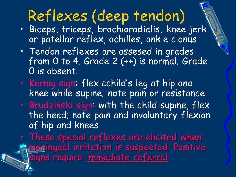 Reflexes (deep tendon)
