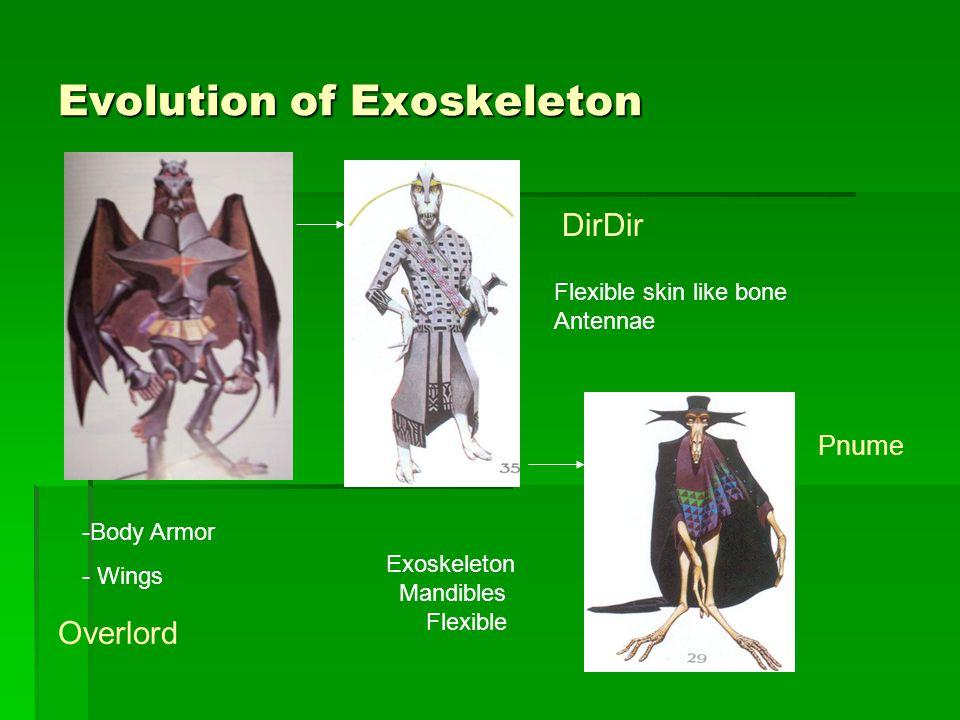 Evolution of Exoskeleton