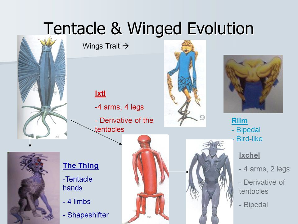 Tentacle & Winged Evolution