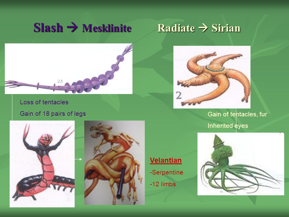 Slash  Mesklinite Radiate  Sirian