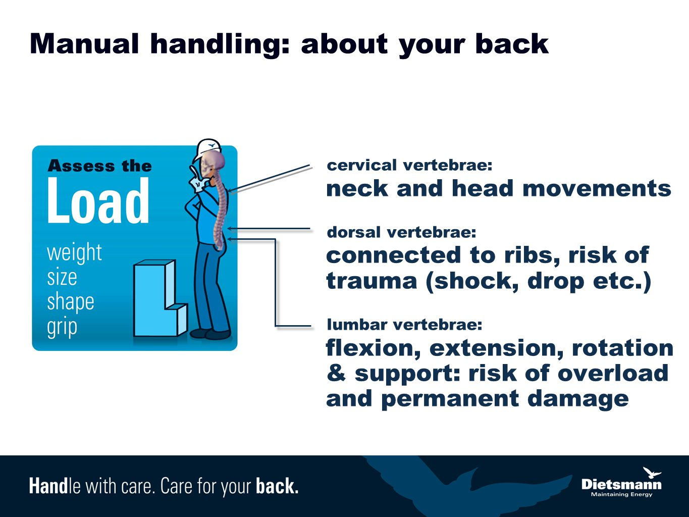Manual handling: about your back