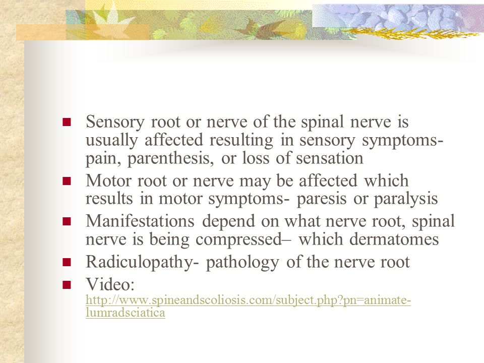 Sensory root or nerve of the spinal nerve is usually affected resulting in sensory symptoms- pain, parenthesis, or loss of sensation