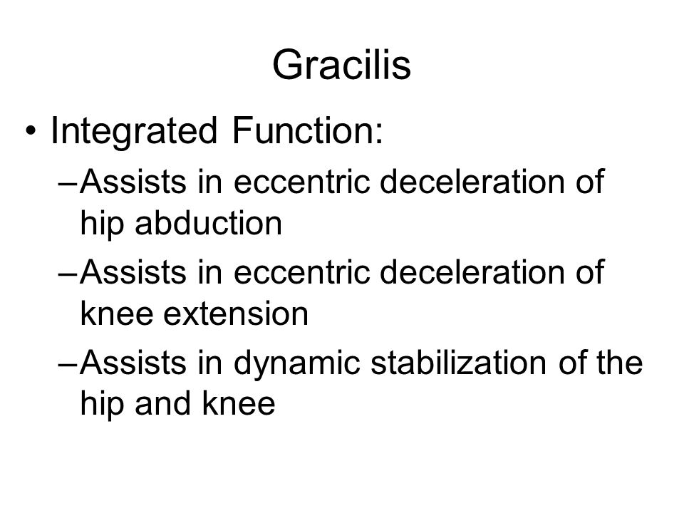 Gracilis Integrated Function: