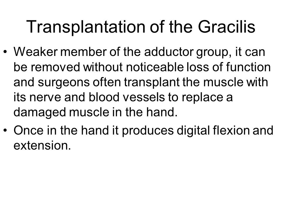 Transplantation of the Gracilis