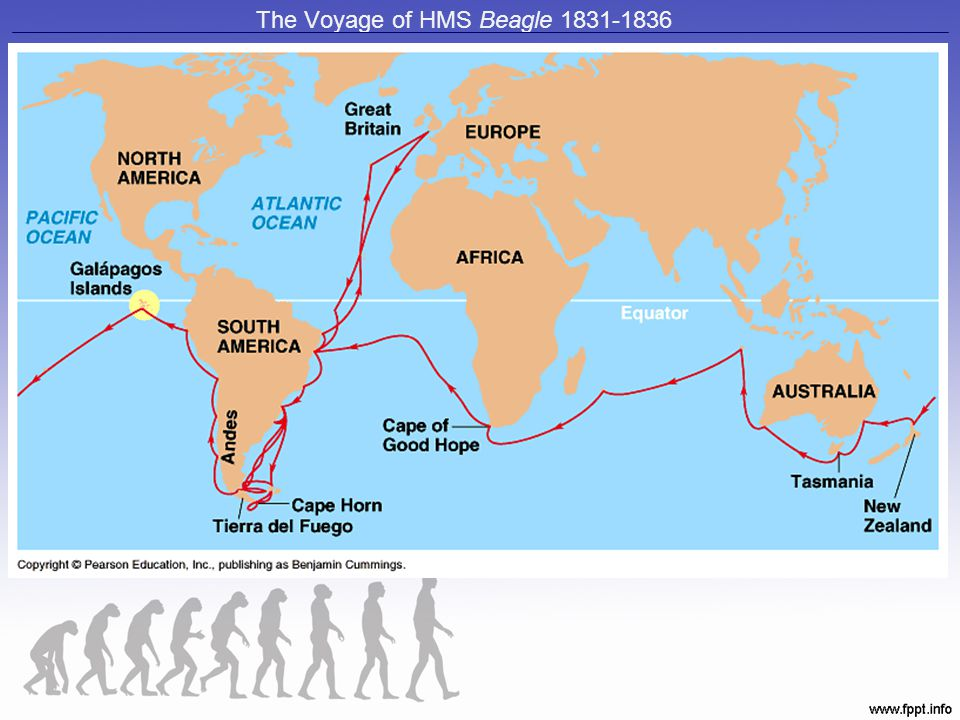 The Voyage of HMS Beagle 1831-1836