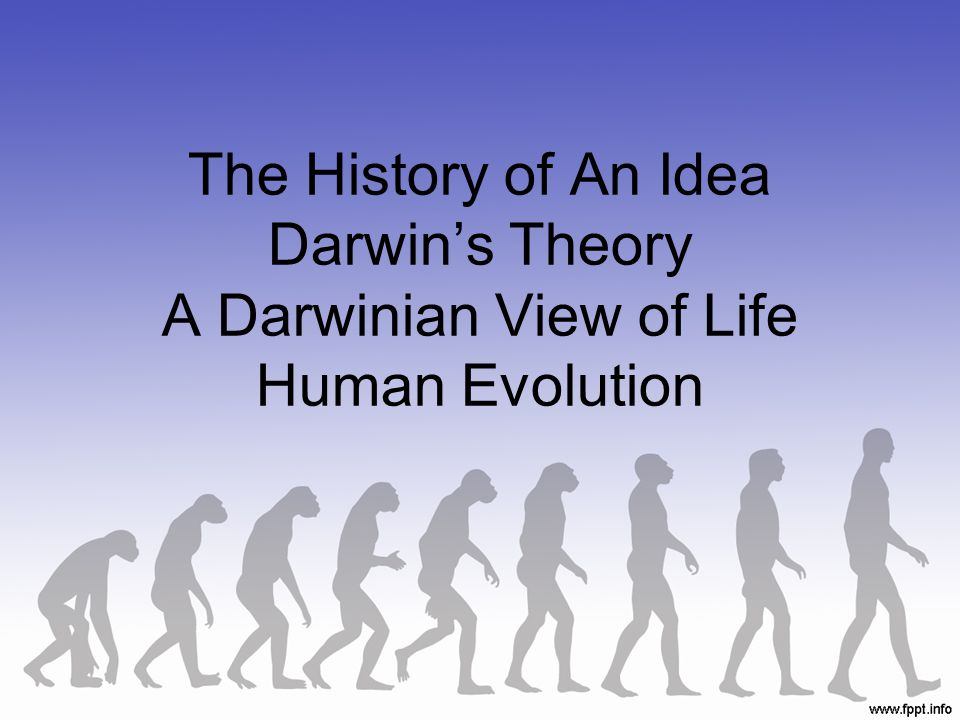 The History of An Idea Darwin's Theory A Darwinian View of Life Human Evolution