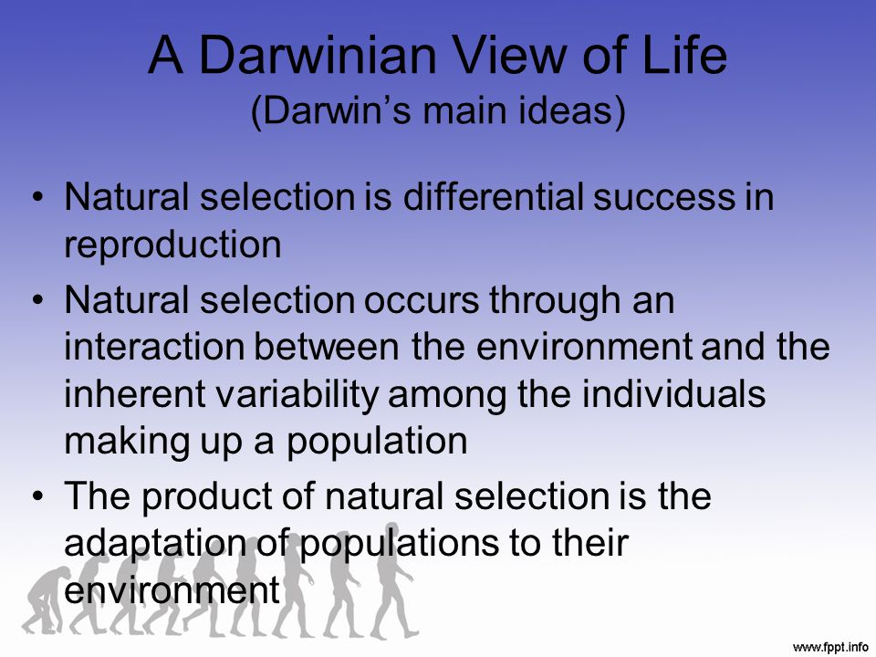 A Darwinian View of Life (Darwin's main ideas)