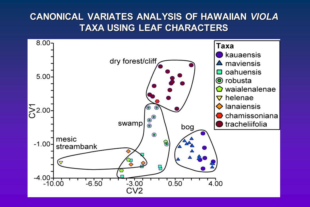 CANONICAL VARIATES ANALYSIS OF HAWAIIAN VIOLA TAXA USING LEAF CHARACTERS