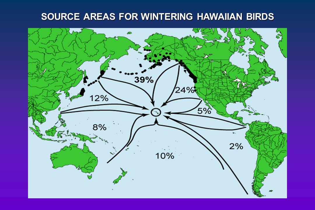 SOURCE AREAS FOR WINTERING HAWAIIAN BIRDS