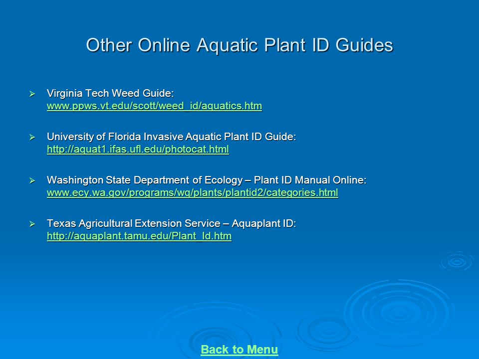 Other Online Aquatic Plant ID Guides