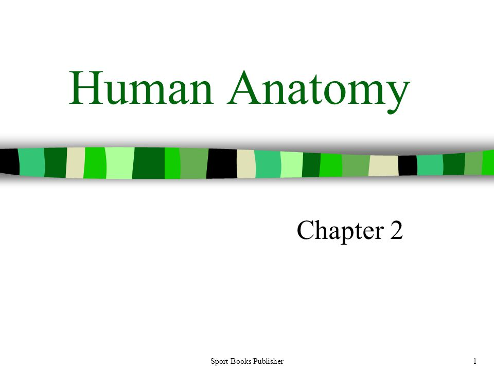 Human Anatomy Chapter 2 Sport Books Publisher