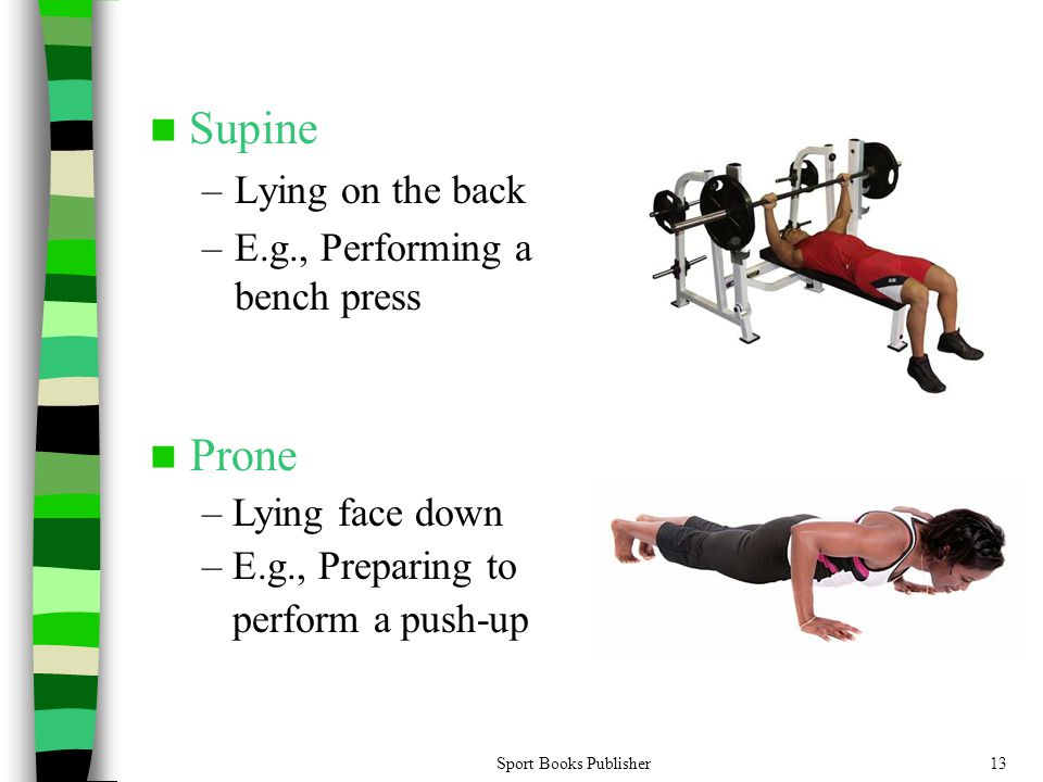 Supine Prone Lying on the back E.g., Performing a bench press