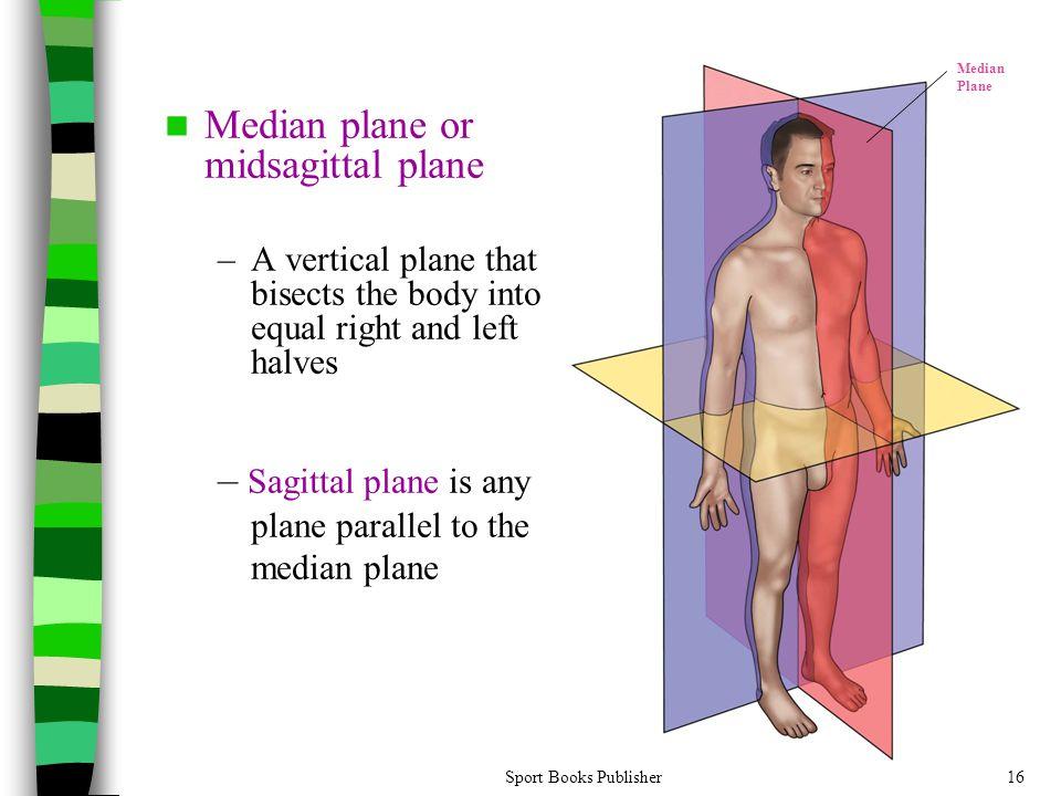Median plane or midsagittal plane