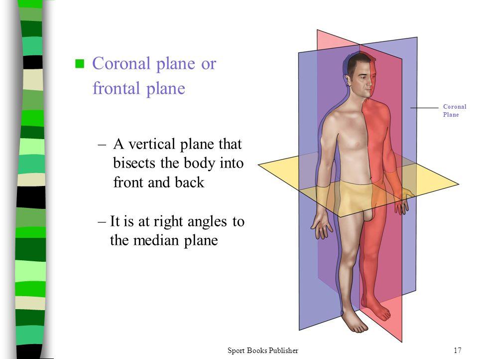Coronal plane or frontal plane
