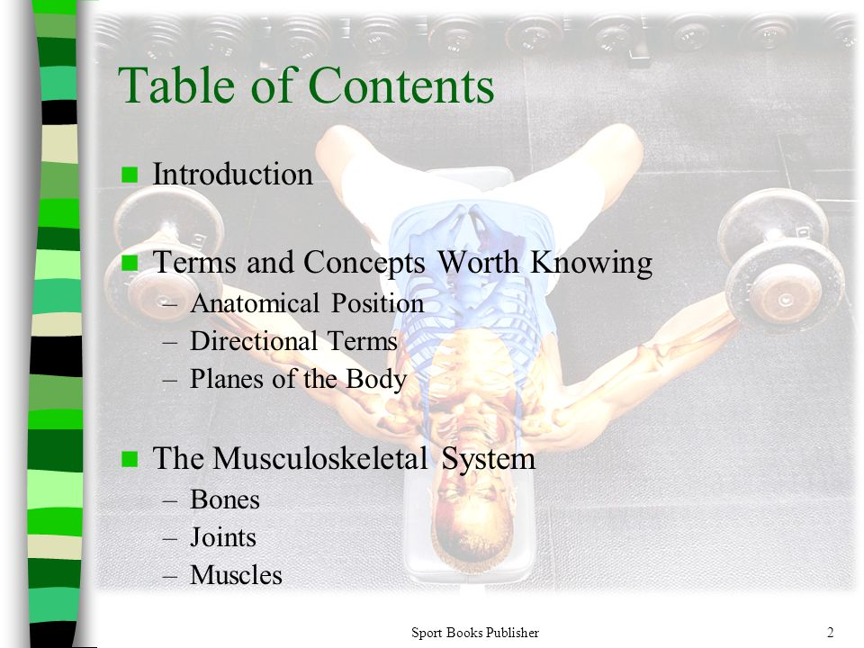 Table of Contents Introduction Terms and Concepts Worth Knowing