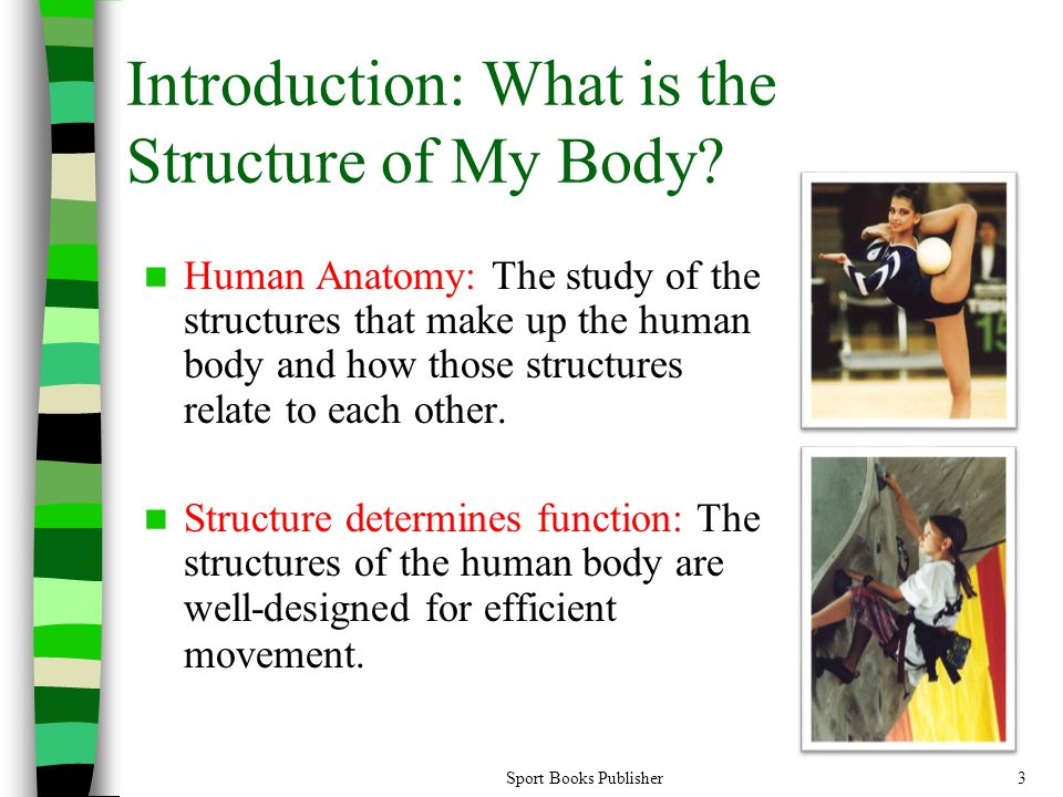 Introduction: What is the Structure of My Body