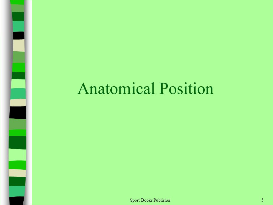 Anatomical Position Sport Books Publisher