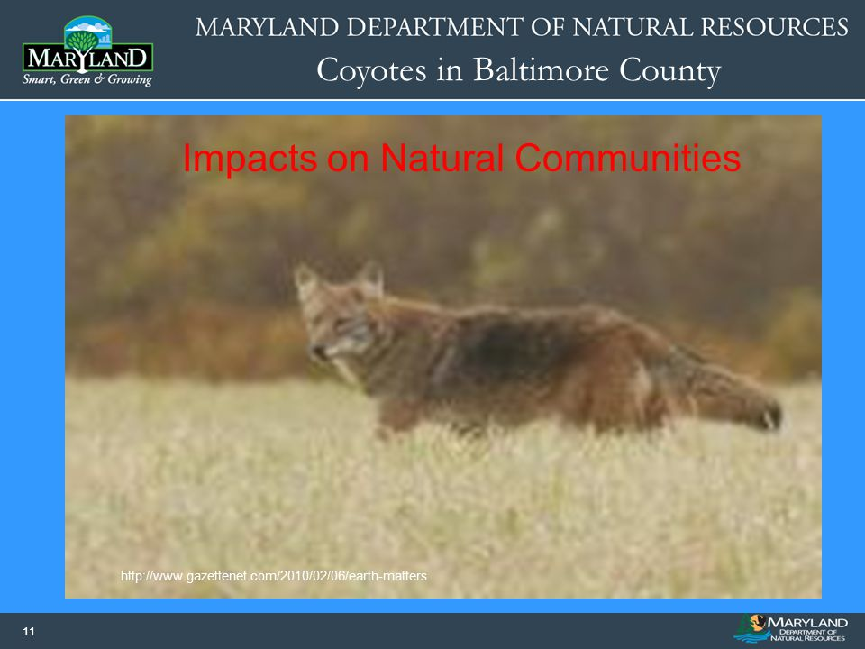 Impacts on Natural Communities