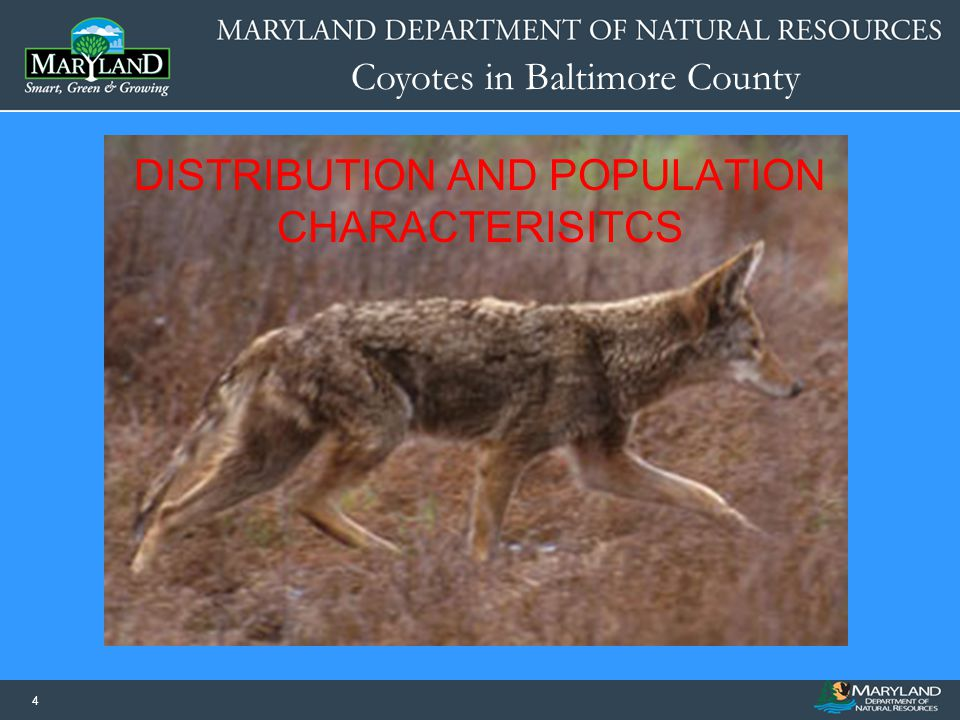 DISTRIBUTION AND POPULATION CHARACTERISITCS