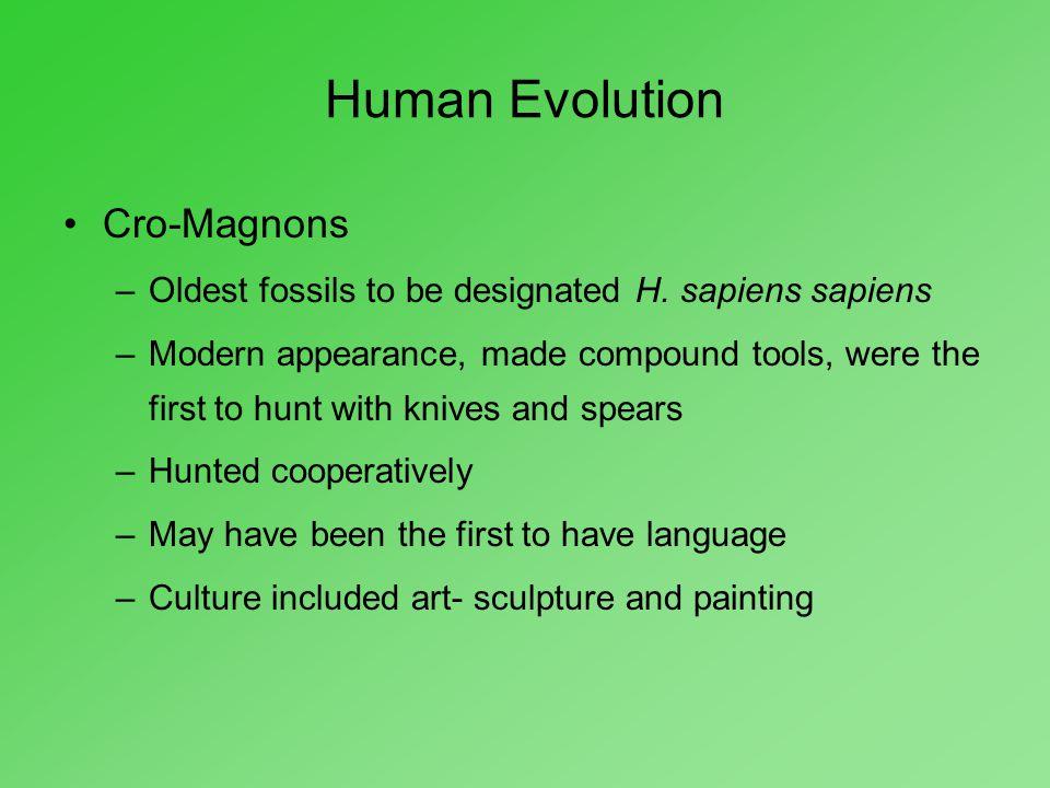 Human Evolution Cro-Magnons