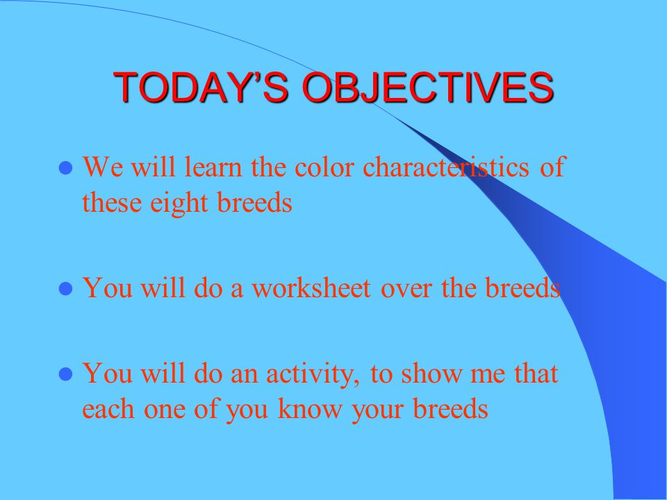 TODAY'S OBJECTIVES We will learn the color characteristics of these eight breeds. You will do a worksheet over the breeds.