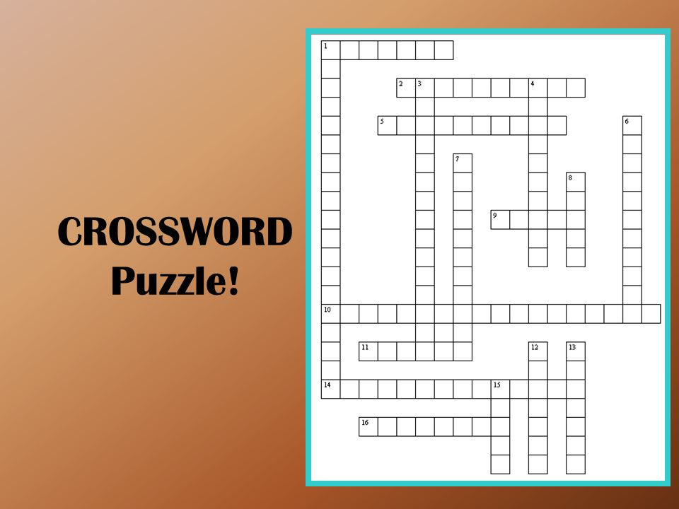 CROSSWORD Puzzle!