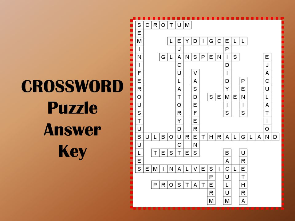 CROSSWORD Puzzle Answer Key