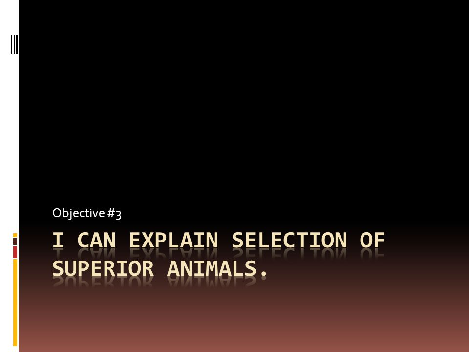 I can explain selection of superior animals.