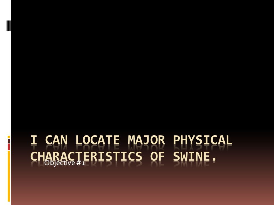 I can locate major physical characteristics of swine.