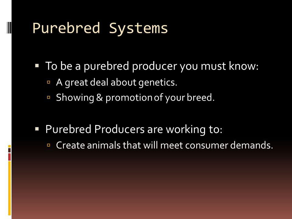 Purebred Systems To be a purebred producer you must know: