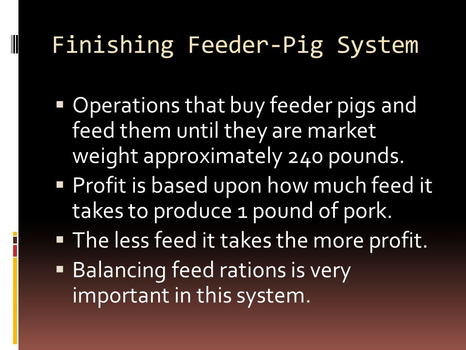 Finishing Feeder-Pig System