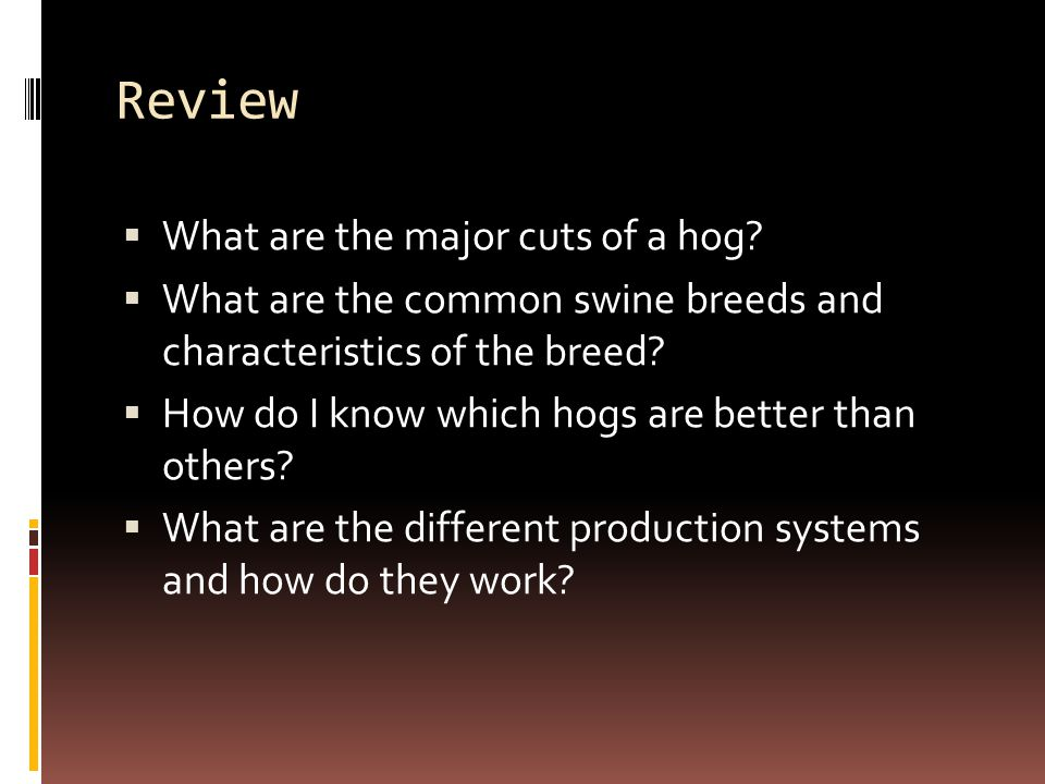 Review What are the major cuts of a hog