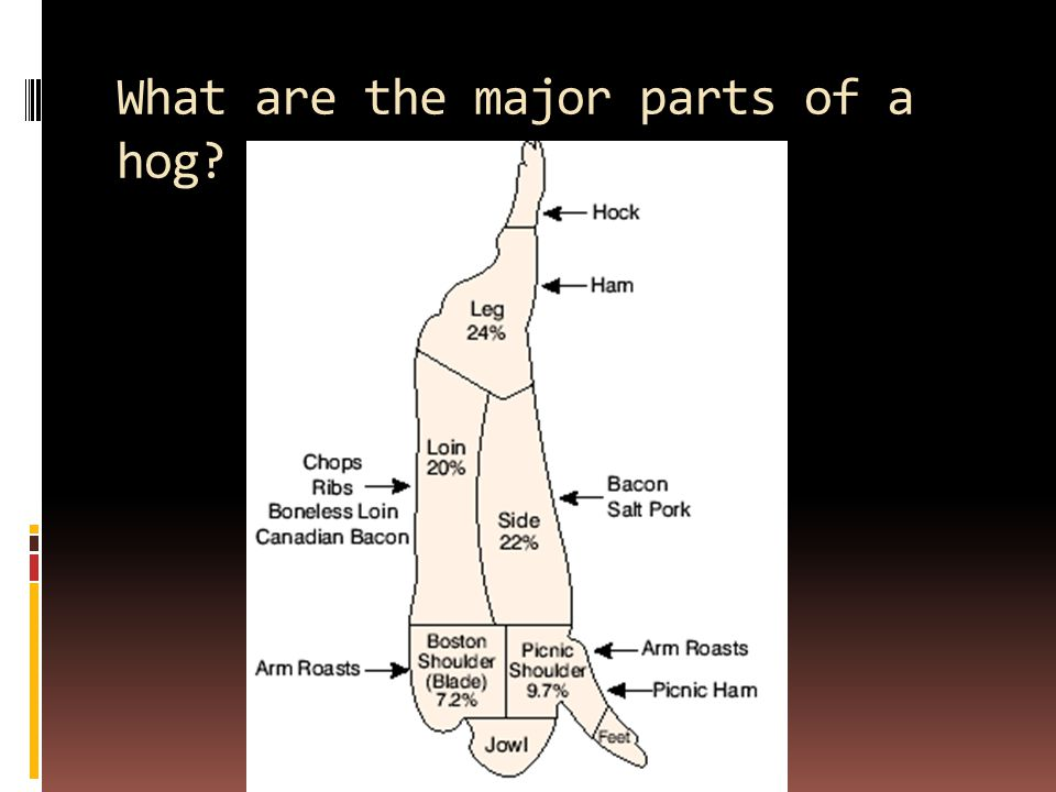 What are the major parts of a hog