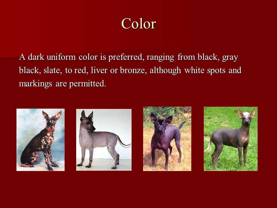Color A dark uniform color is preferred, ranging from black, gray