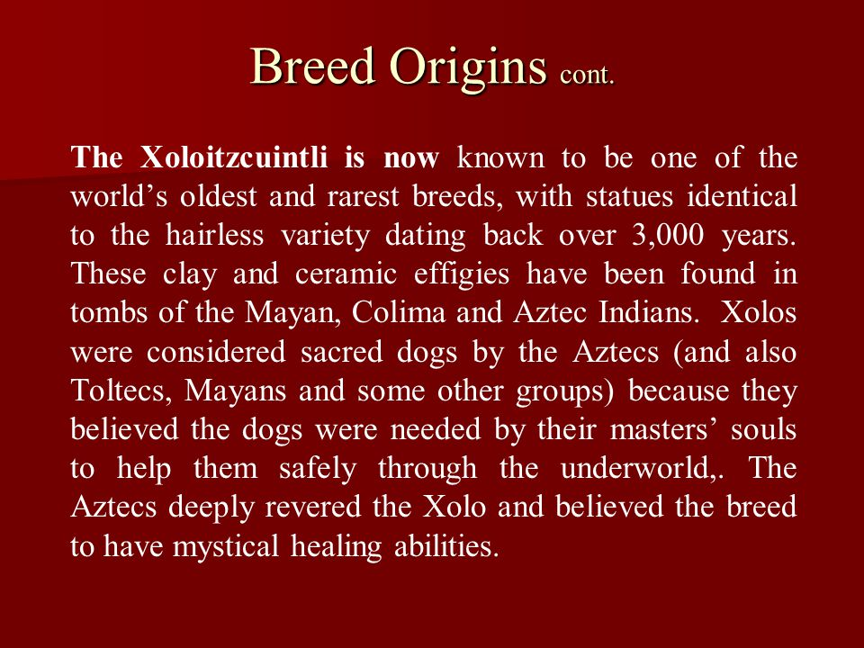 Breed Origins cont.