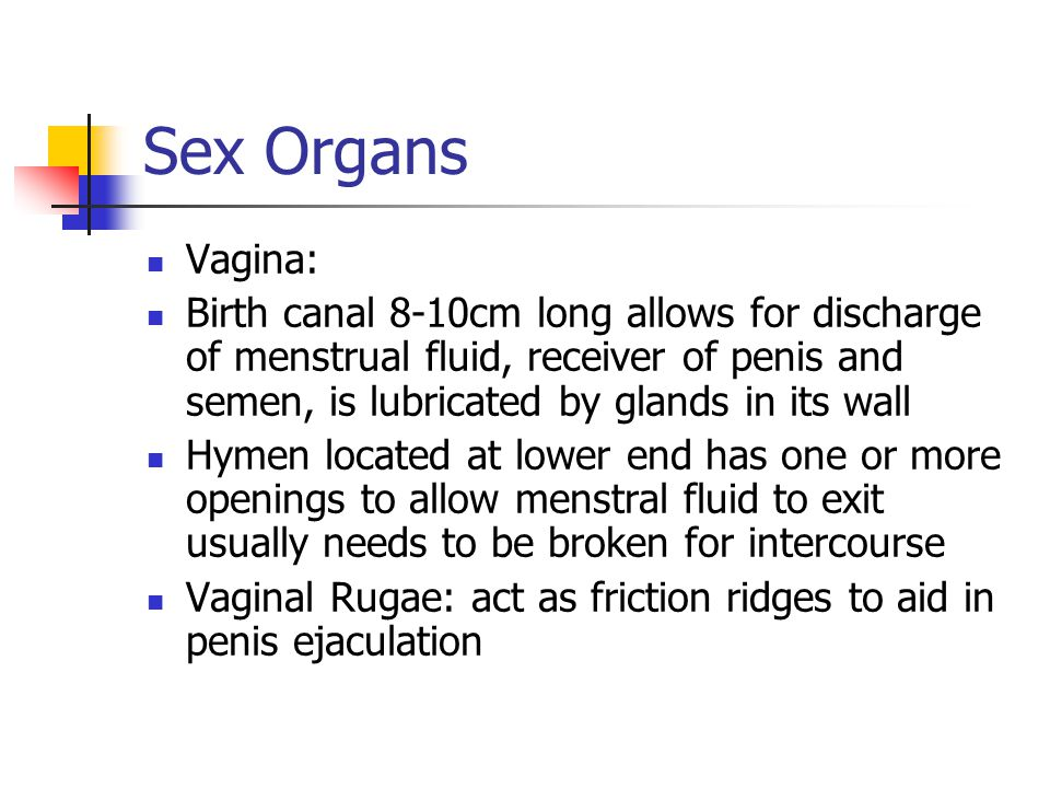 Sex Organs Vagina: Birth canal 8-10cm long allows for discharge of menstrual fluid, receiver of penis and semen, is lubricated by glands in its wall.