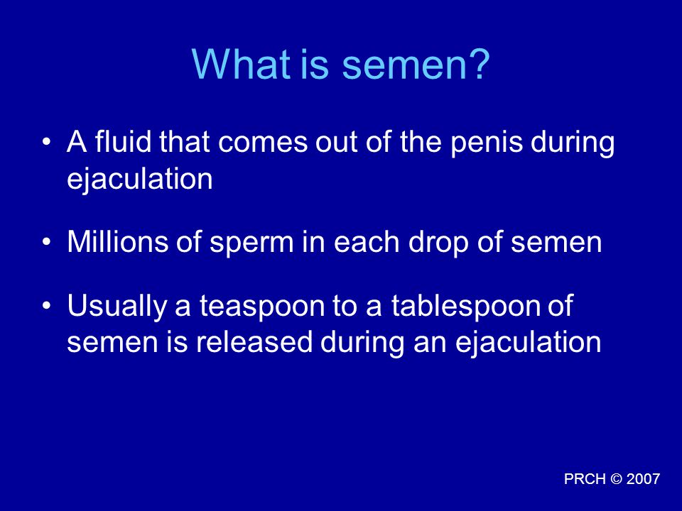What is semen A fluid that comes out of the penis during ejaculation