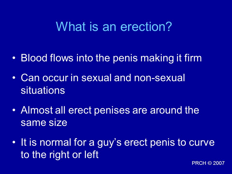 What is an erection Blood flows into the penis making it firm