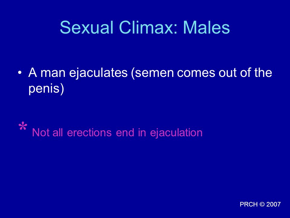* Not all erections end in ejaculation