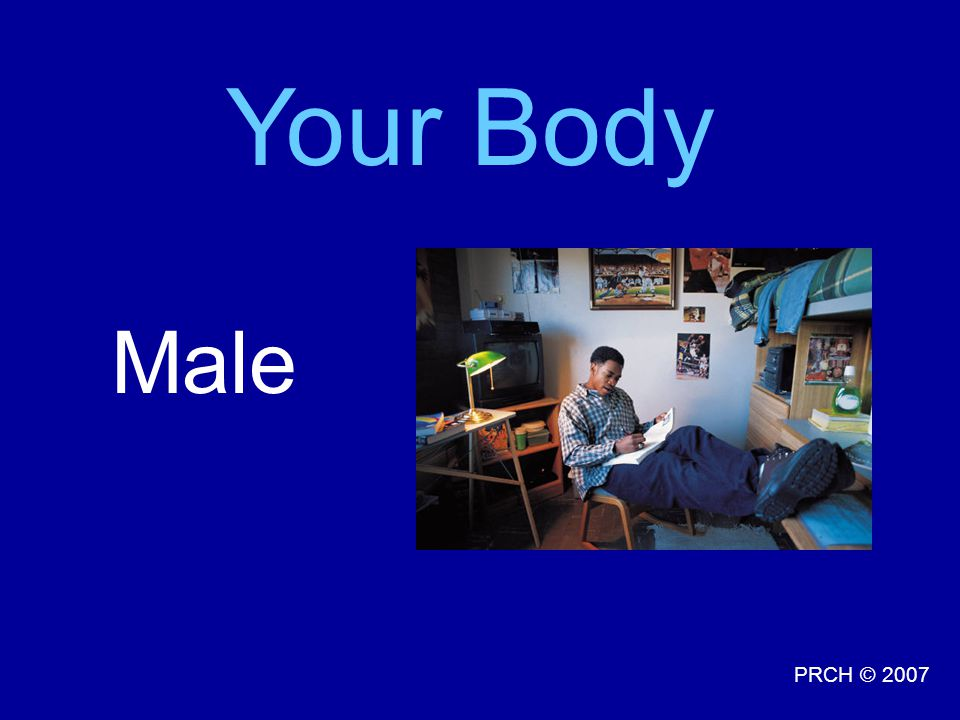 Your Body Male Talking Point: Every man's body is different looking and unique.