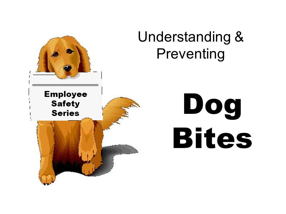 Understanding & Preventing