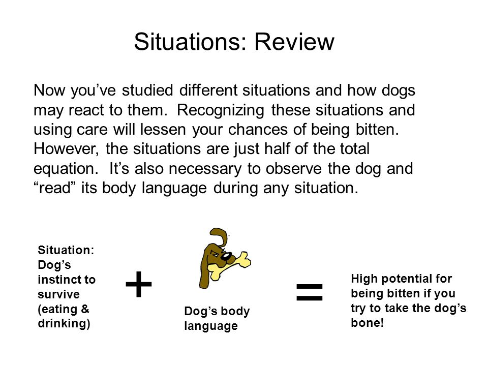 Situations: Review