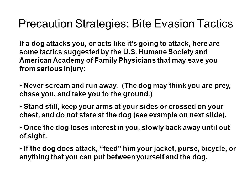 Precaution Strategies: Bite Evasion Tactics
