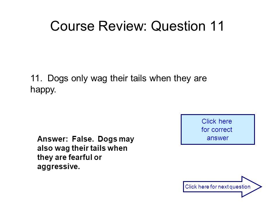 Course Review: Question 11