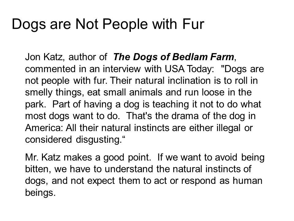 Dogs are Not People with Fur