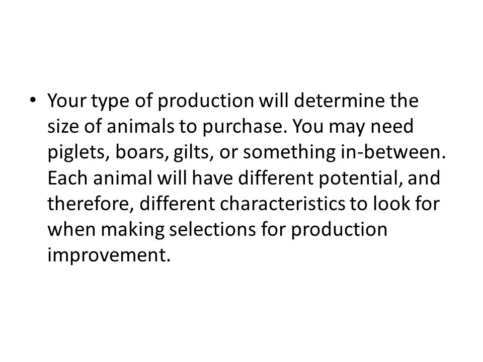 Your type of production will determine the size of animals to purchase