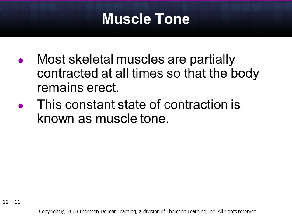 Muscle Tone Most skeletal muscles are partially contracted at all times so that the body remains erect.