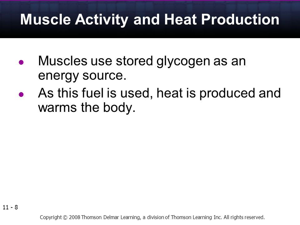 Muscle Activity and Heat Production