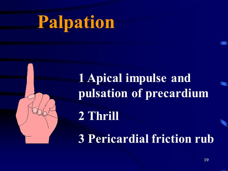 Palpation 1 Apical impulse and pulsation of precardium 2 Thrill